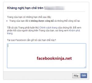 huong dan mo khoa fanpage 1 300x271 Phần mềm ninja facebook  Hướng dẫn mở khóa Fanpage